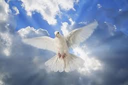 The Holy Spirit. Like a dove. gentle. loving. Here for us to help us.