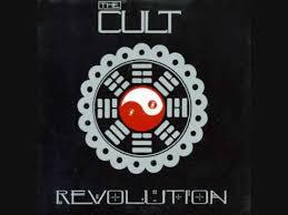 cult 12