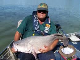 fishing tinny 4