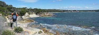 sydney coastline 2